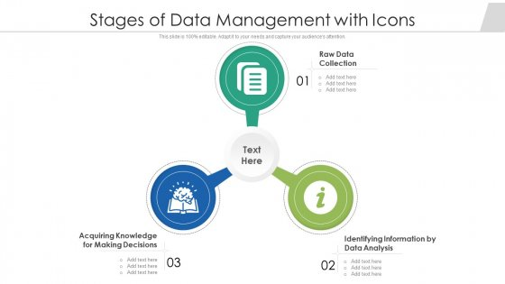 Stages Of Data Management With Icons Ppt Gallery Themes PDF