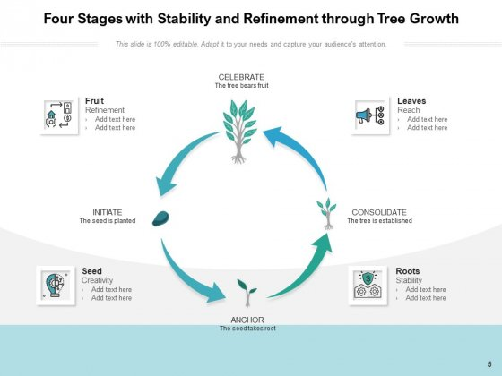 Stages_Of_Growing_Tree_Growth_Resources_Ppt_PowerPoint_Presentation_Complete_Deck_Slide_5
