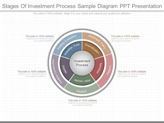Stages Of Investment Process Sample Diagram Ppt Presentation