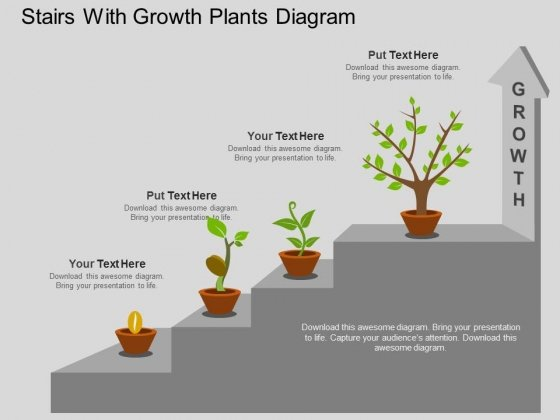 Stairs With Growth Plants Diagram Powerpoint Template