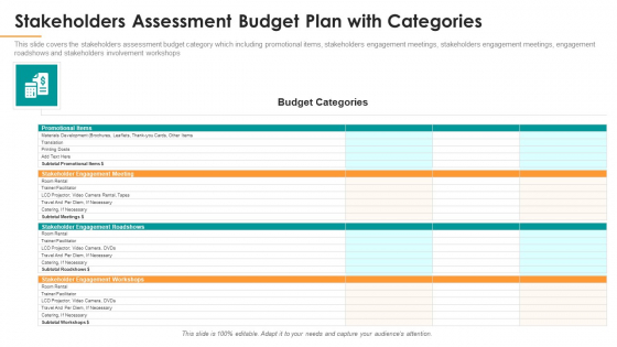 Stakeholders Assessment Budget Plan With Categories Ppt Styles Example File PDF