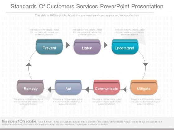 Standards Of Customers Services Powerpoint Presentation