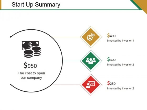 Start Up Summary Ppt PowerPoint Presentation Portfolio Display