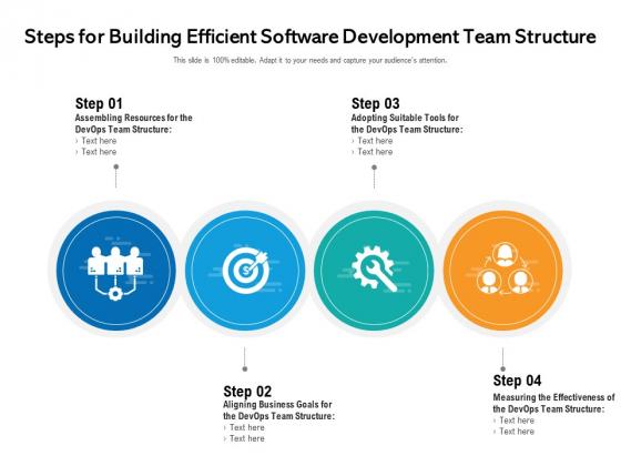 Steps For Building Efficient Software Development Team Structure Ppt PowerPoint Presentation File Show PDF