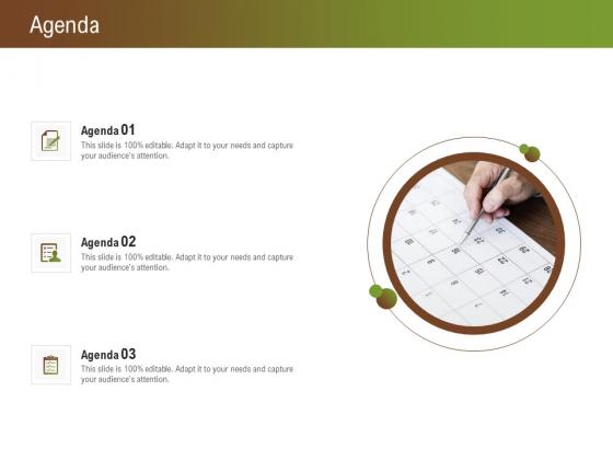Steps_For_Successful_Brand_Building_Process_Agenda_Structure_PDF_Slide_1