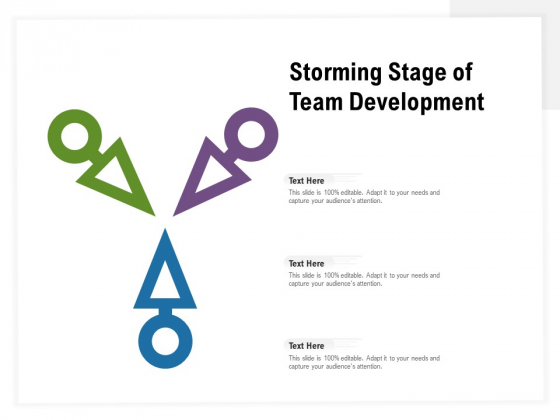Storming Stage Of Team Development Ppt PowerPoint Presentation Infographic Template Example Topics PDF