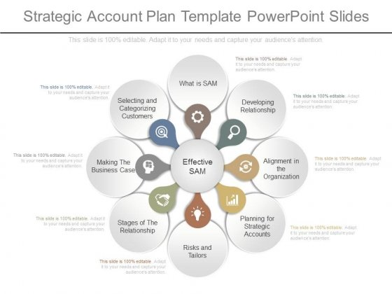 Strategic Account Plan Template Powerpoint Slides  Powerpoint