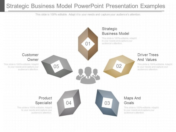 Strategic Business Model Powerpoint Presentation Examples