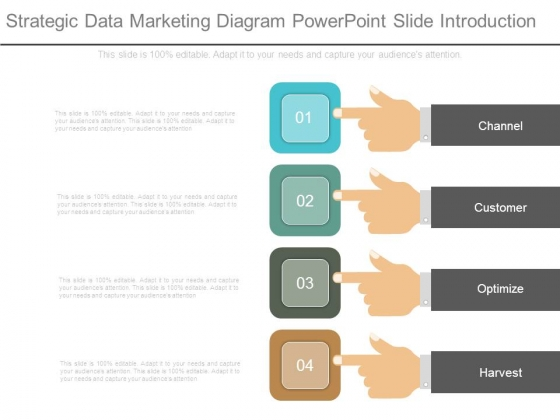 Strategic Data Marketing Diagram Powerpoint Slide Introduction