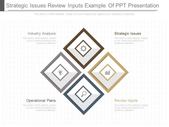 Strategic Issues Review Inputs Example Of Ppt Presentation