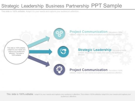 Strategic Leadership Business Partnership Ppt Sample