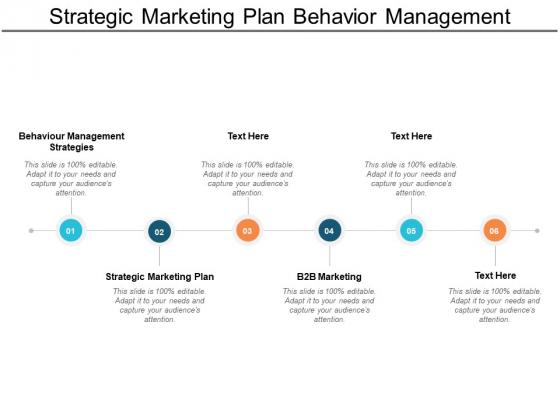 Strategic Marketing Plan Behaviour Management Strategies B2b Marketing Ppt PowerPoint Presentation Professional Outfit