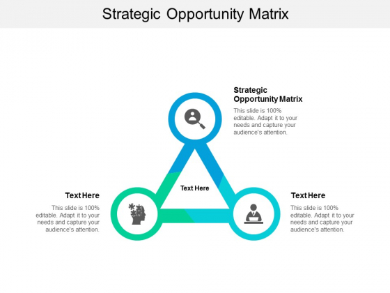 Strategic Opportunity Matrix Ppt PowerPoint Presentation Outline Vector Cpb