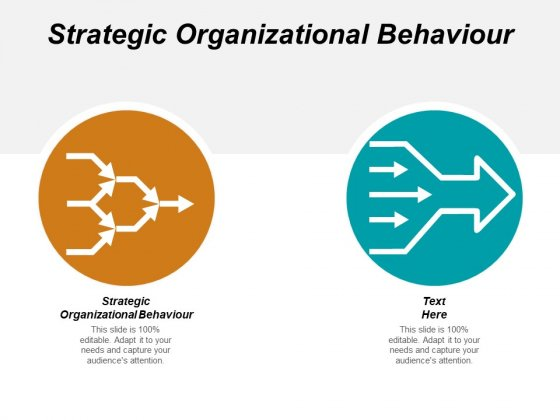 Strategic Organizational Behaviour Ppt PowerPoint Presentation Layouts Graphic Images Cpb
