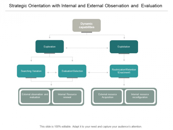 Strategic Orientation With Internal And External Observation And Evaluation Ppt PowerPoint Presentation Ideas Designs Download
