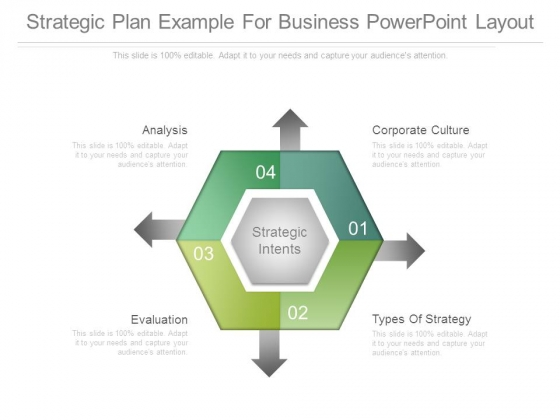 Strategic Plan Example For Business Powerpoint Layout