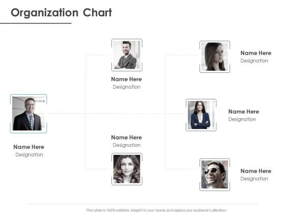 Strategic Plan For Companys Development Organization Chart Ppt PowerPoint Presentation Portfolio Format