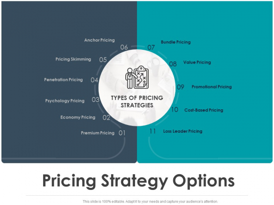 Strategic Plan For Companys Development Pricing Strategy Options Ppt PowerPoint Presentation Background Images