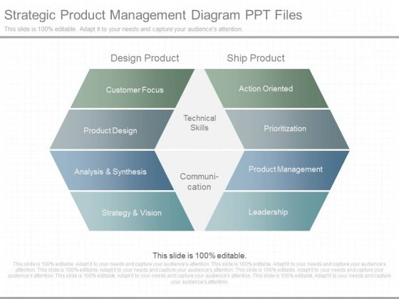 Strategic Product Management Diagram Ppt Files