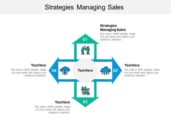 Strategies Managing Sales Ppt PowerPoint Presentation Portfolio Inspiration Cpb