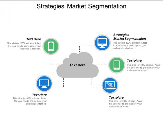 Strategies Market Segmentation Ppt PowerPoint Presentation Portfolio Format Cpb