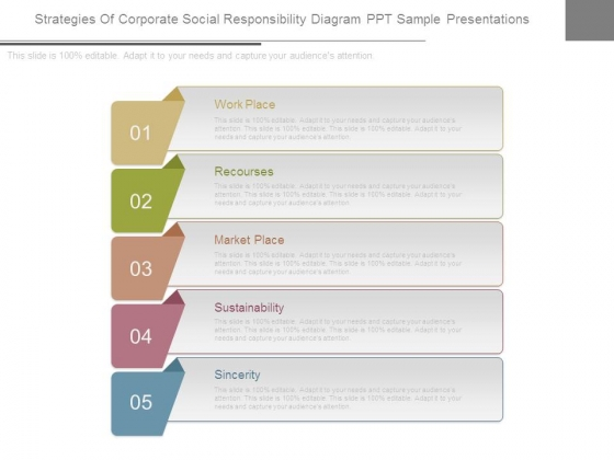 Strategies Of Corporate Social Responsibility Diagram Ppt Sample Presentations