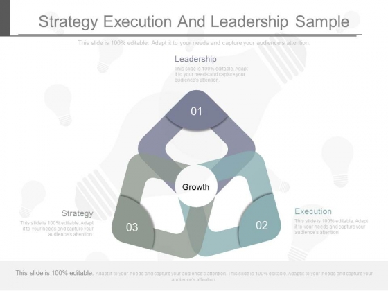 Strategy Execution And Leadership Sample