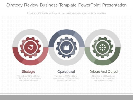 Strategy Review Business Template Powerpoint Presentation