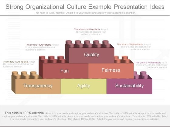 Strong Organizational Culture Example Presentation Ideas