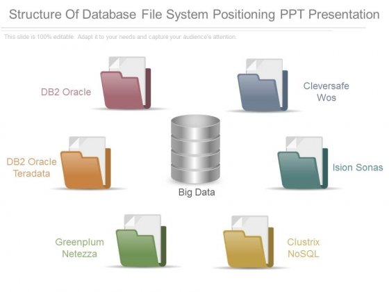 Structure Of Database File System Positioning Ppt Presentation