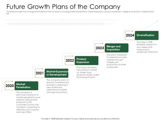 Substitute Financing Pitch Deck Future Growth Plans Of The Company Structure PDF