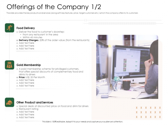 Substitute Financing Pitch Deck Offerings Of The Company Product Graphics PDF