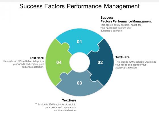Success Factors Performance Management Ppt PowerPoint Presentation Portfolio Examples Cpb