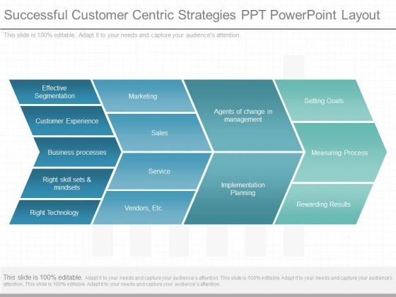 Successful Customer Centric Strategies Ppt Powerpoint Layout