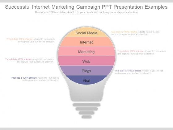 Successful Internet Marketing Campaign Ppt Presentation Examples