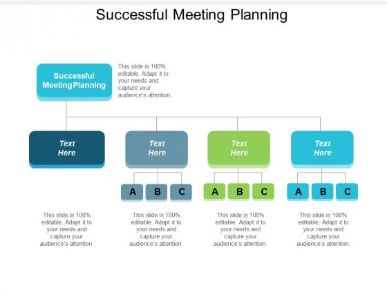 Successful Meeting Planning Ppt PowerPoint Presentation Portfolio Infographics Cpb