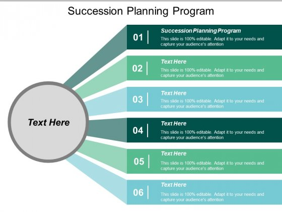 Succession Planning Program Ppt PowerPoint Presentation Styles Slides Cpb