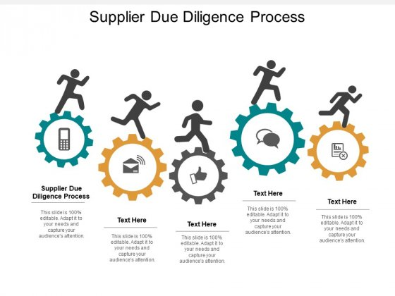 Supplier Due Diligence Process Ppt PowerPoint Presentation Outline Display Cpb