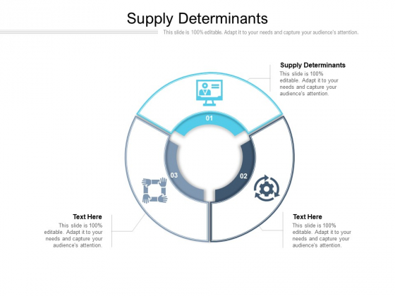 Supply Determinants Ppt PowerPoint Presentation Infographic Template Slides Cpb Pdf