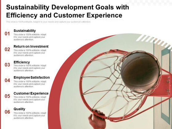 Sustainability Development Goals With Efficiency And Customer Experience Ppt PowerPoint Presentation Styles Diagrams PDF