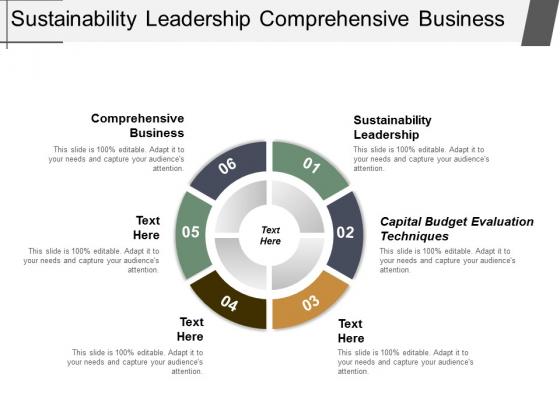 Sustainability Leadership Comprehensive Business Capital Budget Evaluation Techniques Ppt PowerPoint Presentation Portfolio Layouts
