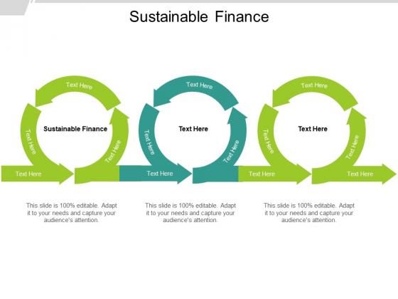 Sustainable Finance Ppt PowerPoint Presentation Ideas Slide Portrait Cpb