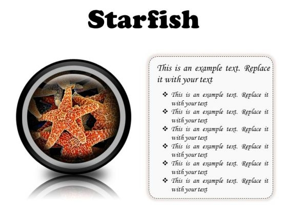 Starfish Animals PowerPoint Presentation Slides Cc
