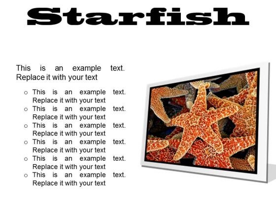 Starfish Animals PowerPoint Presentation Slides F