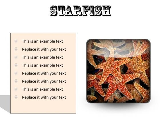 Starfish Animals PowerPoint Presentation Slides S
