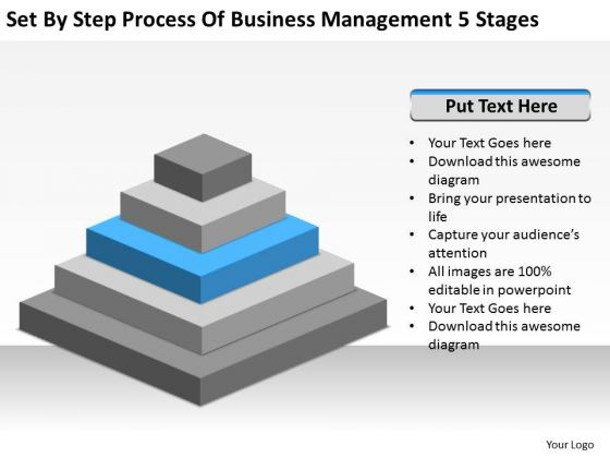 Step Process Of Business Management 5 Stages Ppt Plan Formats PowerPoint Templates