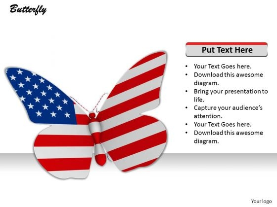 Stock Photo American Butterfly On White Background PowerPoint Slide