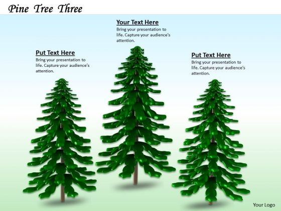 Stock Photo Backdrop Of Pine Trees PowerPoint Slide