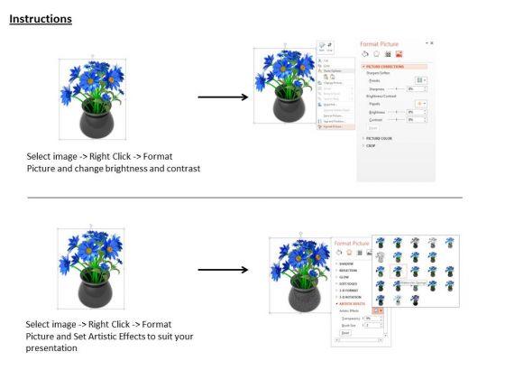 stock_photo_blue_flower_bunch_in_black_pot_powerpoint_slide_3