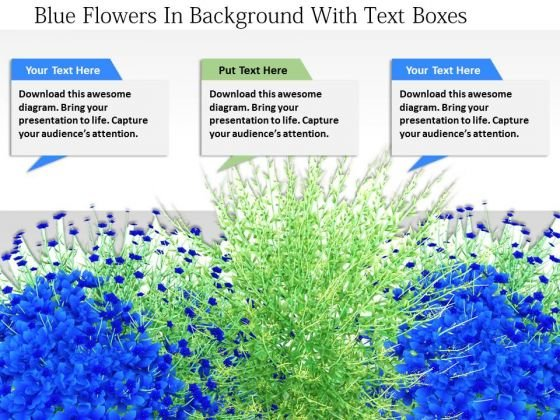 Stock Photo Blue Flowers In Background With Text Boxes PowerPoint Slide